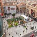 Trina instalará un huerto en pleno centro de Madrid