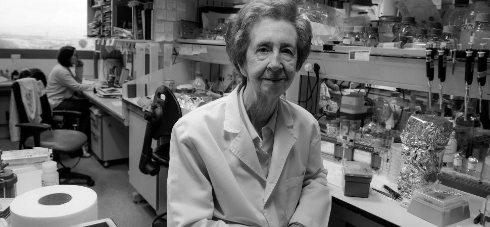 Margarita Salas, premio al inventor europeo del año