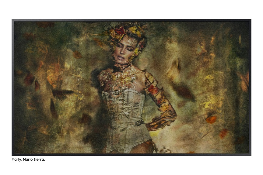 Interpretación de 'El bosque de Marly', de Camille Pissarro