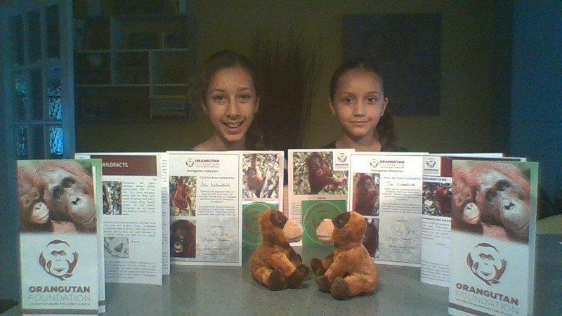En julio las pequeñas adoptaron dos orangutanes a través de 'Orangutan Foundation'.