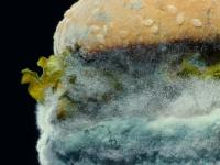 El legado de Fernando Machado en Burger King