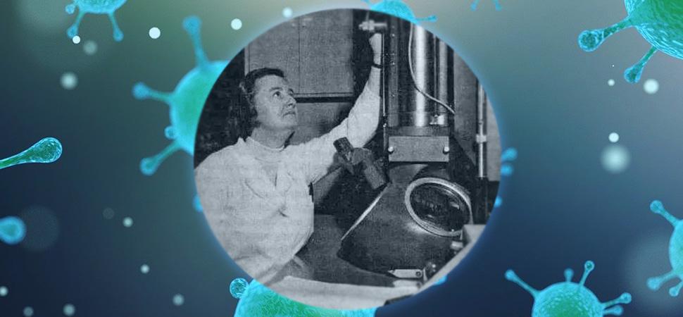 La olvidada científica que descubrió los coronavirus