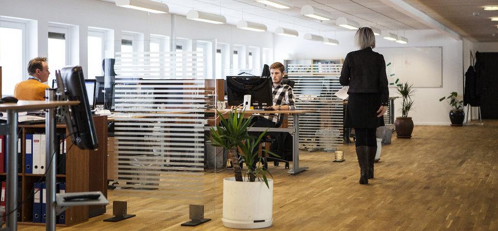 ¿Son efectivos los planes de diversidad de las empresas?