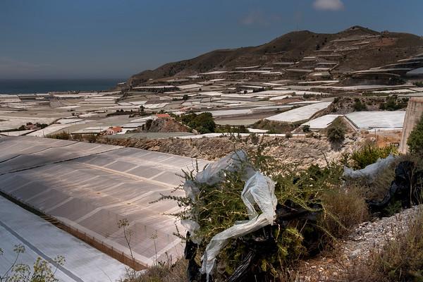 Carchuna, Motril, Granada. Invernaderos que llegan hasta las mismas playas.